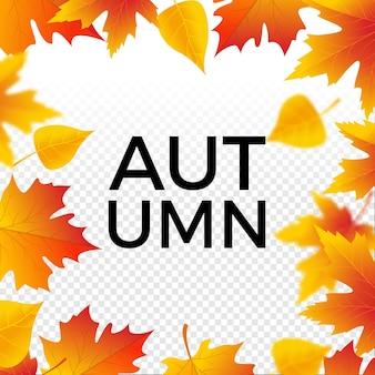 Outono fundo de venda com folhas de plátano. pôster de liquidação de outono