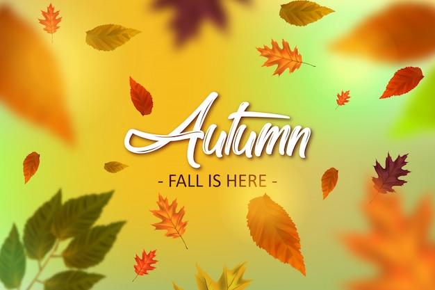 Outono ilustração de fundo