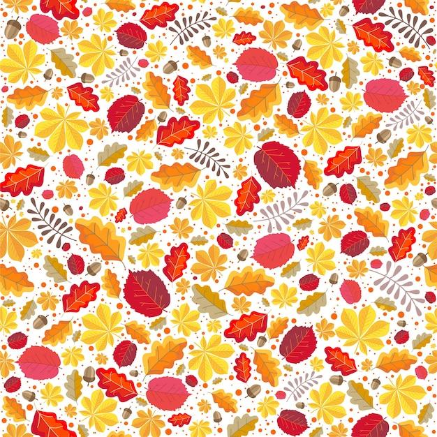 Outono outono, folhas de avelã, carvalho, castanha, bolotas em um fundo branco. fundo sem emenda botânico.