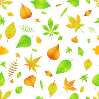 Outono padrão sem emenda com folhas