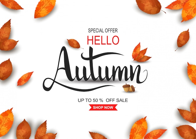 Outono venda fundo