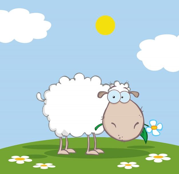 Ovelha branca comendo uma flor em um prado