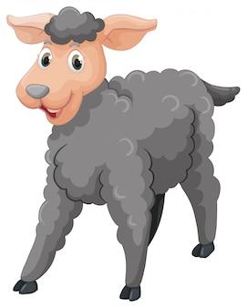 Ovelha cinza com cara feliz