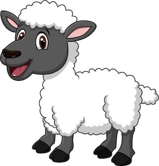 Ovelha engraçado dos desenhos animados que levanta isolado no fundo branco