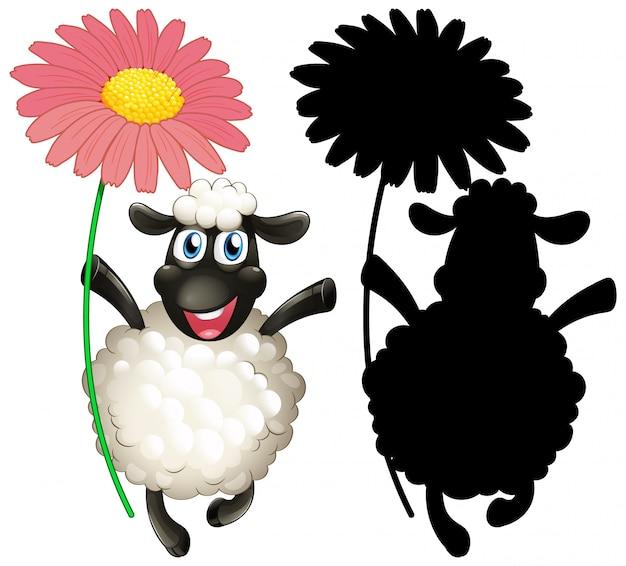 Ovelhas com sua silhueta