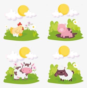 Ovinos porco vaca frango filhotes nuvens sol fazenda animais
