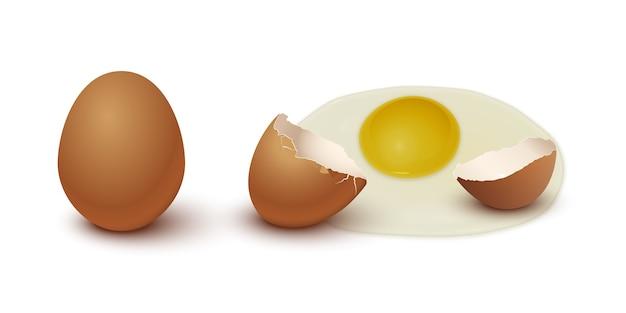 Ovo de galinha marrom, casca de ovo e gema isoladas em fundo cinza.