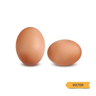 Ovo em um fundo branco