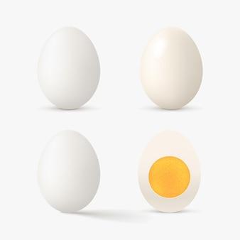 Ovo realista de cor branca definida em branco