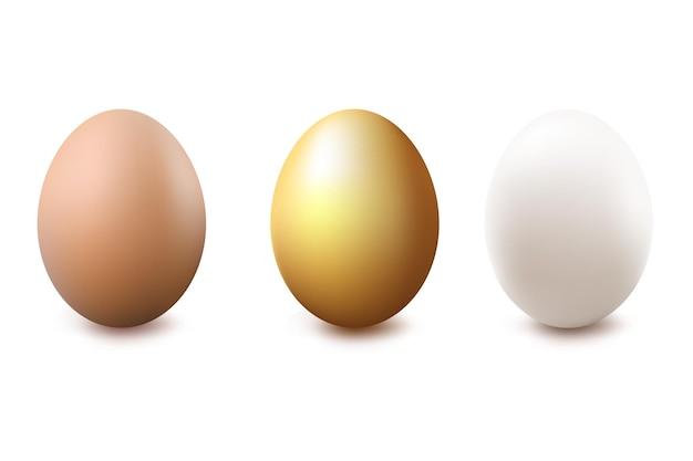 Ovos ouro branco e ilustração marrom isolada