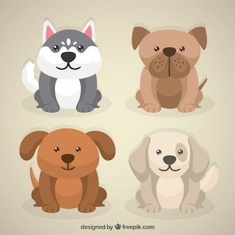 Pacote adorável filhote de cachorro