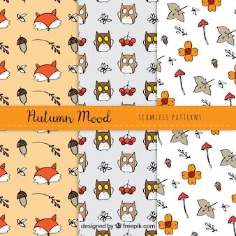 Pacote bonito de padrões de outono com animais