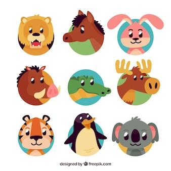 Pacote colorido de caras de animais divertidos