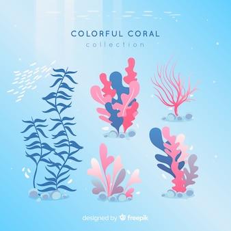 Pacote coral colorido de mão desenhada