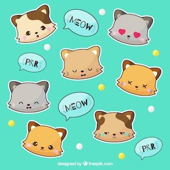 Pacote de adesivos de gato