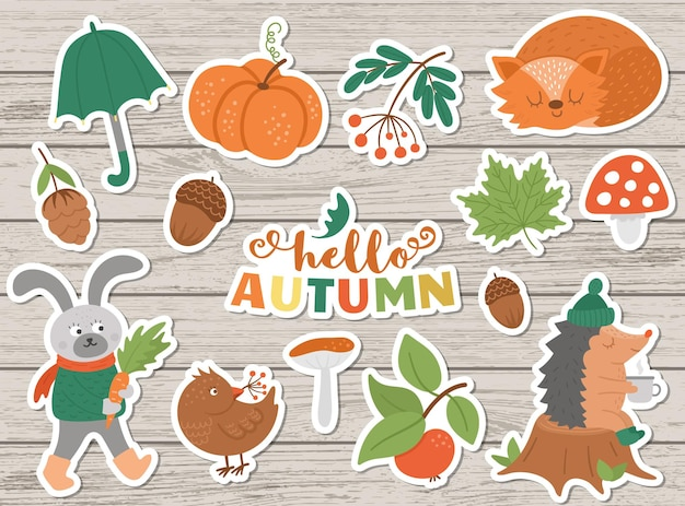 Pacote de adesivos de outono do vetor. ícones bonitos do outono definido para impressões, emblemas. ilustração engraçada de animais da floresta, abóboras, cogumelos, folhas, colheita, vegetais, pássaros
