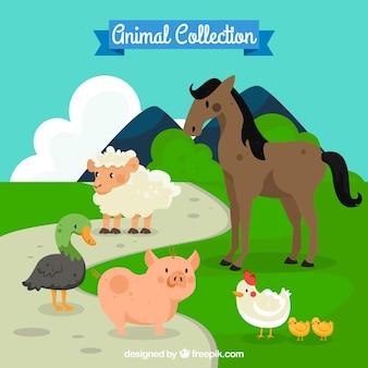 Pacote de animais de fazenda na natrue