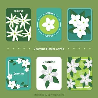 Pacote de bonitos cartões de jasmim