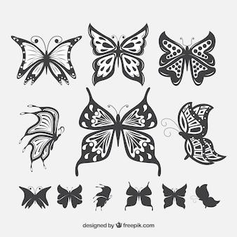 Pacote de borboletas com asas bonitas
