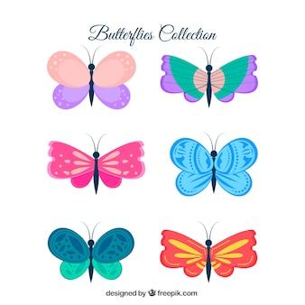 Pacote de borboletas decorativas coloridas