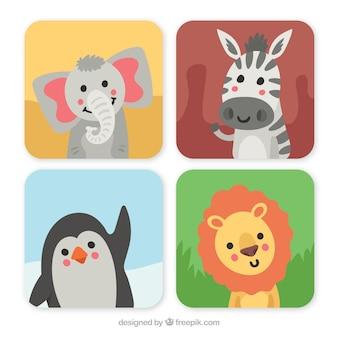 Pacote de cartas com animais sorrisos