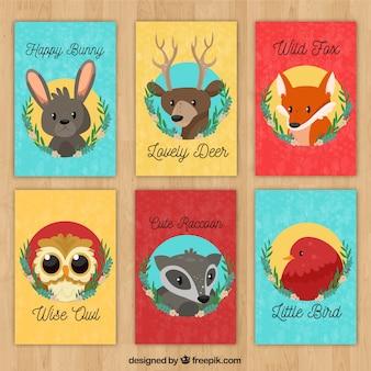 Pacote de cartões com caras de animais selvagens