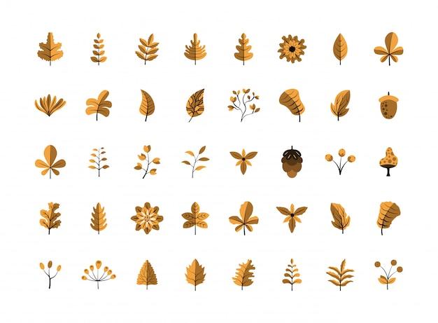 Pacote de coleção de folhas e flores de outono de design plano