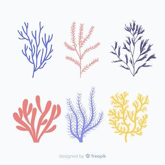 Pacote de coral desenhado a mão