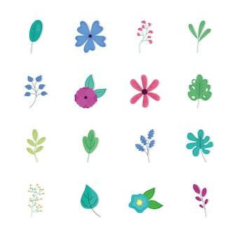 Pacote de dezesseis flores da primavera e ilustração de folhas