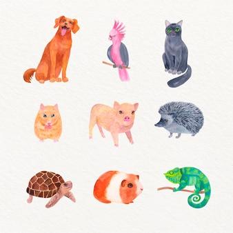 Pacote de diferentes animais de estimação