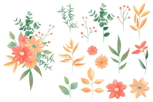 Pacote de elementos florais em aquarela