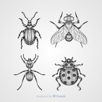 Pacote de esboço de inseto desenhado mão