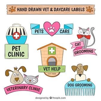 Pacote de etiquetas veterinário desenhados à mão