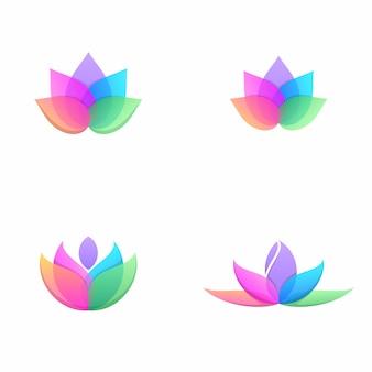 Pacote de flor de lótus