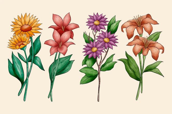 Pacote de flores de botânica vintage