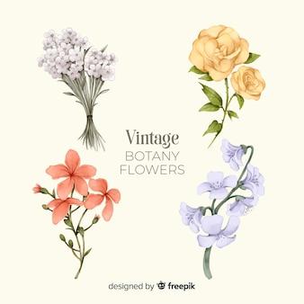 Pacote de flores de mão desenhada