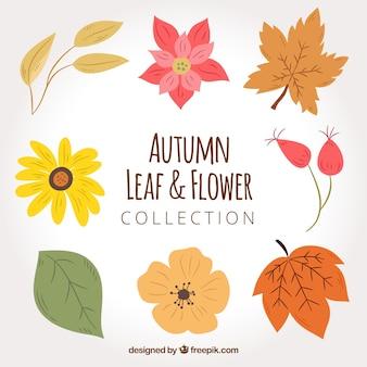 Pacote de flores desenhadas à mão e folhas secas
