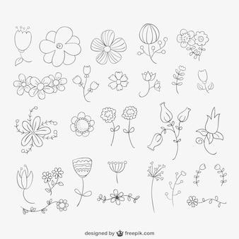 Pacote de flores desenhadas mão