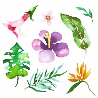 Pacote de flores e folhas tropicais em aquarela