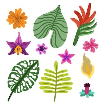 Pacote de flores e folhas tropicais