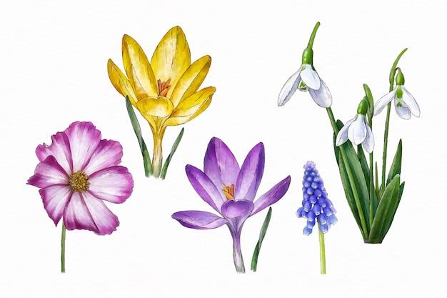 Pacote de flores em aquarela de primavera