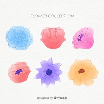 Pacote de flores em aquarela
