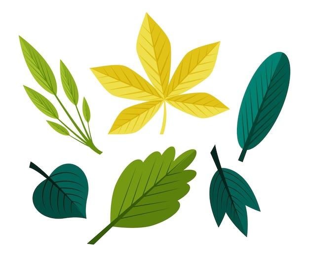 Pacote de folhas de design plano