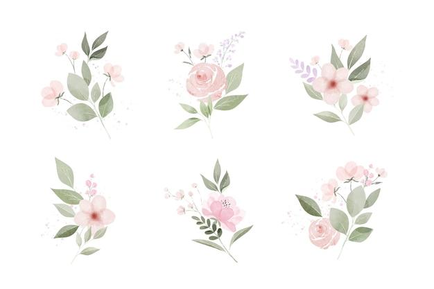 Pacote de folhas e flores em aquarela