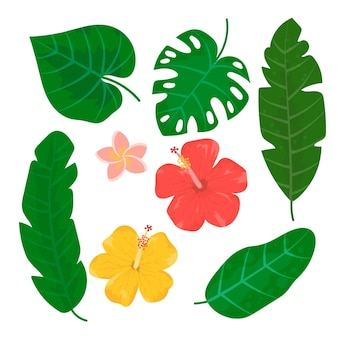 Pacote de folhas e flores tropicais