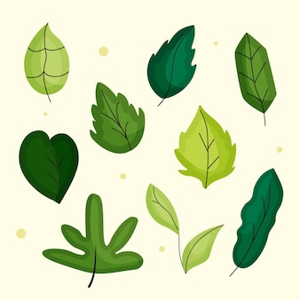 Pacote de folhas verdes de design plano