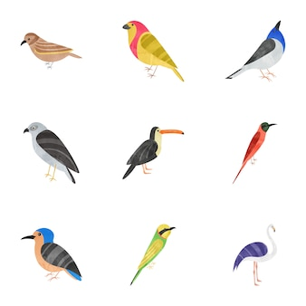 Pacote de ícones plana de pássaros