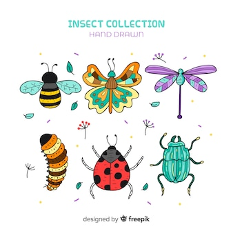 Pacote de insetos dos desenhos animados