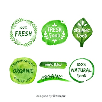 Pacote de logotipos de comida orgânica desenhada de mão