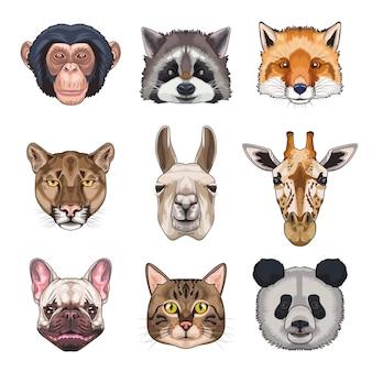 Pacote de nove animais domésticos e ilustração de ícones selvagens